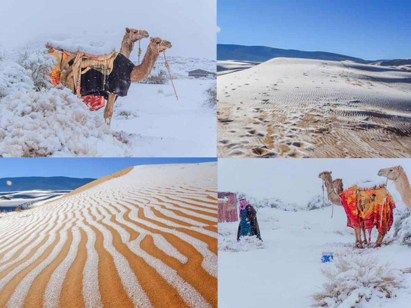 il-ghiaccio-copre-deserto-sahara-accaduto-4-50-anni-v3-494805-800x600-1