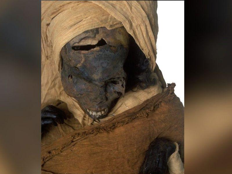 il-tragico-brutale-destino-dell-antico-faraone-seqenenra-ta-o-rivelato-v3-500071-800x600-1